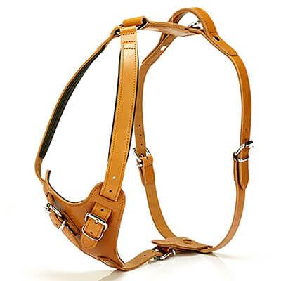 Doggie - Doggie Gerçek Deriden El Yapımı Dragon Model Köpek Göğüs Tasması Camel