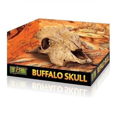 Exo Terra Bufalo Kafatası Sürüngen Yuvası