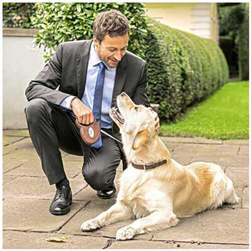 Flexi Deri Köpek Otomatik Gezdirme Tasması Kahverengi
