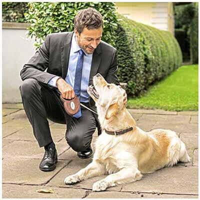 Flexi - Flexi Deri Köpek Otomatik Gezdirme Tasması Kahverengi