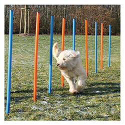 Trixie Köpek Agility Eğitim Direkleri - Thumbnail