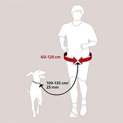 Trixie Köpek İle Koşu veya Yürüme Kemeri ve Gezdirme Kayışı - Thumbnail