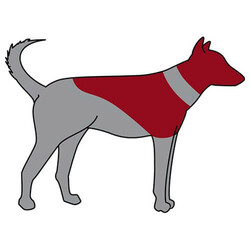 Trixie Köpek Koruyucu Şişme Yakalık - Thumbnail