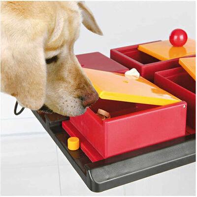 Trixie Köpek Zeka Eğitim Oyuncağı,Poker