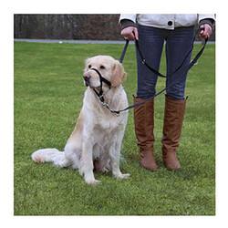 Trixie - Trixie Uzman Köpek Eğitim Tasması